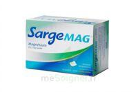 SARGEMAG, granulés effervescents en sachet-dose à Rueil-Malmaison