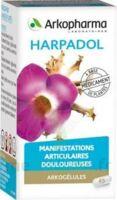ARKOGELULES HARPAGOPHYTON, 150 gélules à Rueil-Malmaison