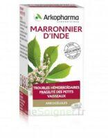ARKOGELULES MARRONNIER D'INDE, gélule à Rueil-Malmaison