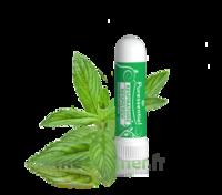 PURESSENTIEL RESPIRATOIRE Inhalation nasal 19 huiles essentielles à Rueil-Malmaison