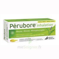 PERUBORE Caps inhalation par vapeur inhalation Plq/15 à Rueil-Malmaison
