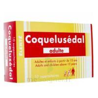 COQUELUSEDAL ADULTES, suppositoire à Rueil-Malmaison