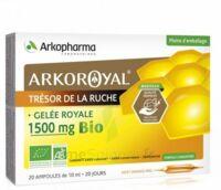 Arkoroyal Gelée royale bio 1500 mg Solution buvable 20 Ampoules/10ml à Rueil-Malmaison